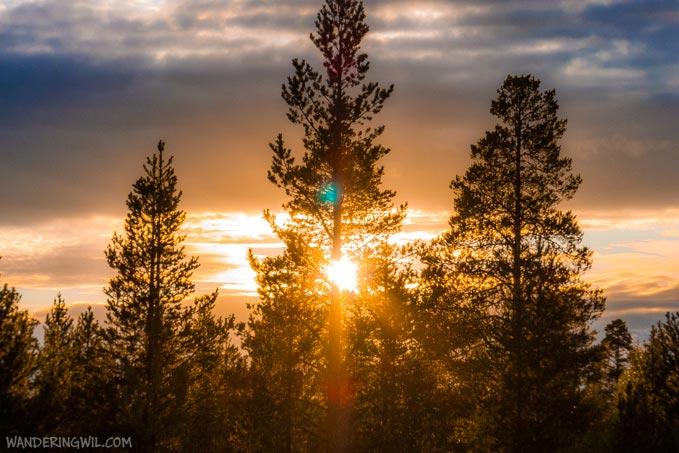 pini-tramonto-WanderingWil