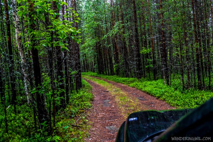 strada-bosco-verde-WanderingWil