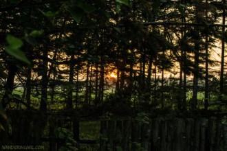 Il campeggio fantasma