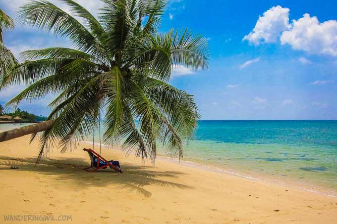 palma-sdraio-mare-koh-maak-wandering-wil