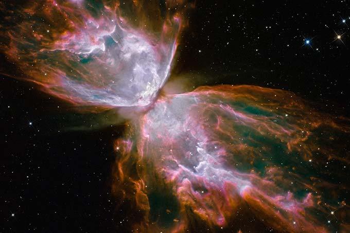 butterfly-nebula-wandering-wil