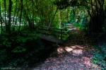 parco-giustiniani-spresiano-WanderingWil