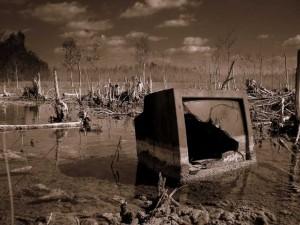 swamp-tv