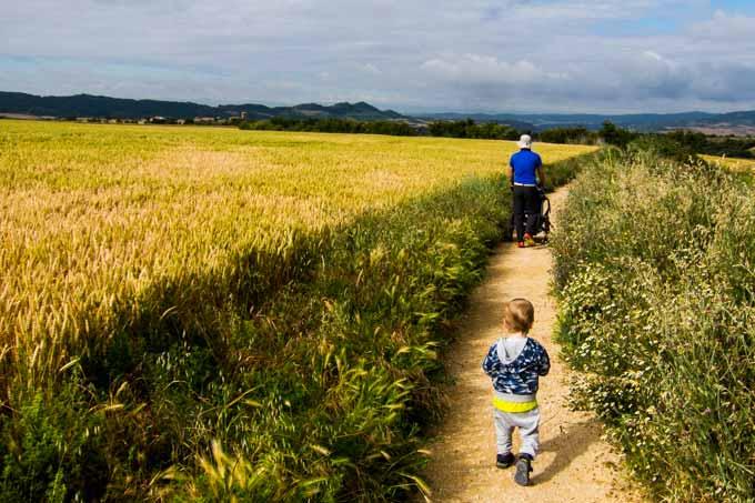 cammino-santiago-wandering-wil-8